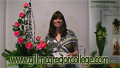 Flower Arranging Video Lesson showing a curved line of roses and the Contemporary Flower Arranging Technique - Cupping